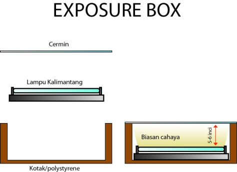 exposure box 1