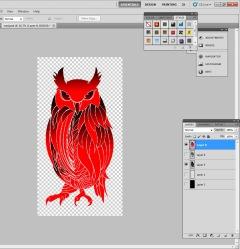 owl trace